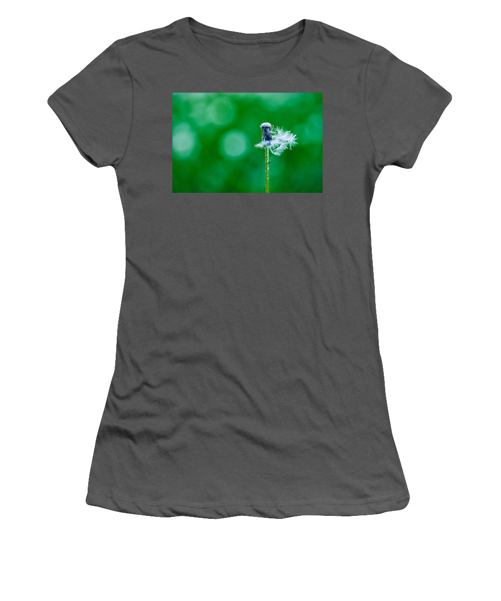 Abstract Women's T-Shirt (Athletic Fit) featuring the photograph Fallen Off Dandelion - Featured 3 by Alexander Senin