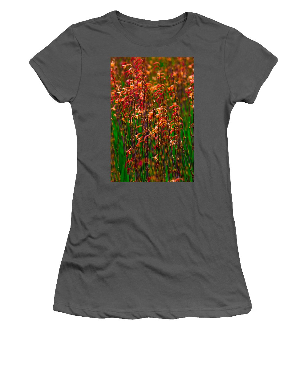Leaves Women's T-Shirt (Athletic Fit) featuring the photograph Flowers Of Fire by Edgar Laureano