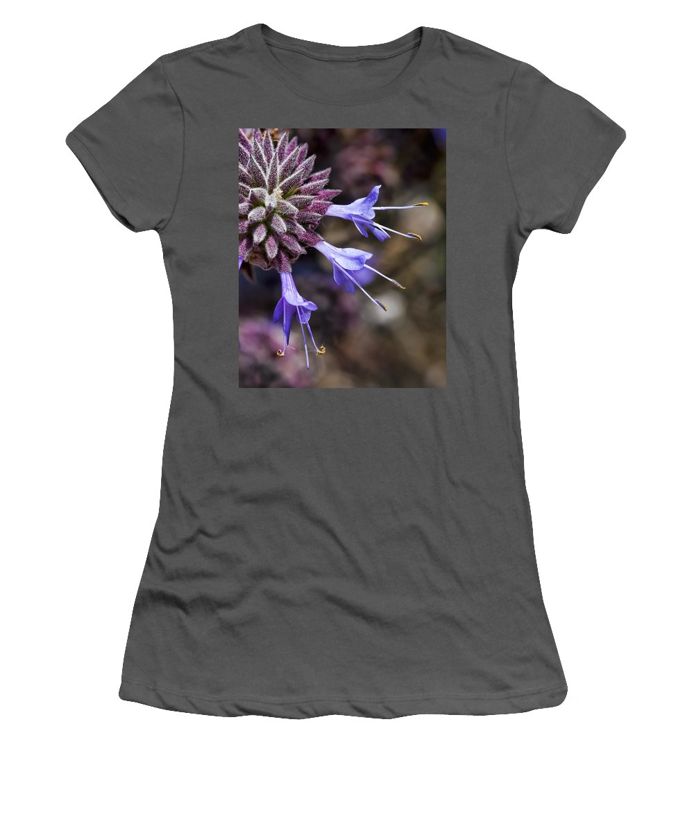 Macro Flowers Women's T-Shirt (Athletic Fit) featuring the photograph Fuzzy Purple Detail 2 by Kelley King