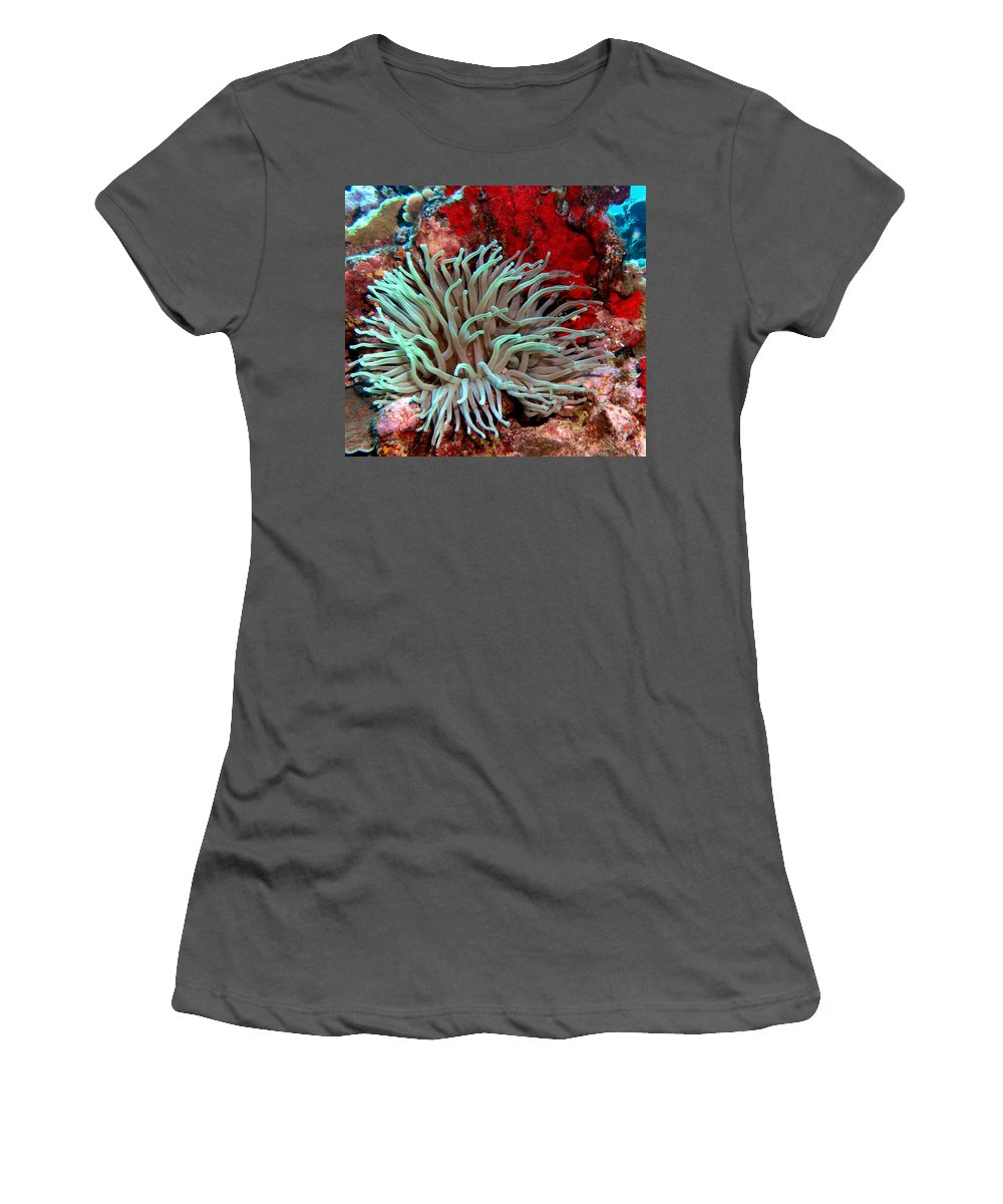 Nature Women's T-Shirt (Athletic Fit) featuring the photograph Giant Green Sea Anemone Against Red Coral by Amy McDaniel