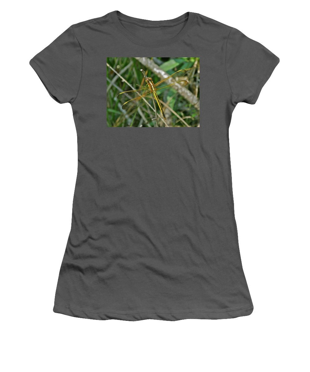Dragonfly Women's T-Shirt (Athletic Fit) featuring the photograph Golden Dragonfly At Rest by Mother Nature