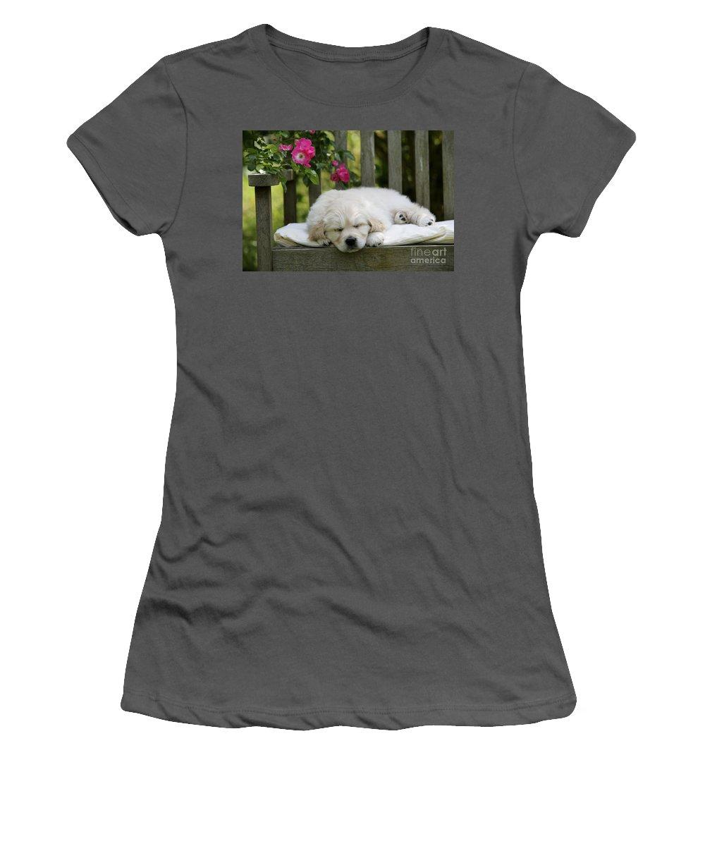 Golden Retriever Women's T-Shirt (Athletic Fit) featuring the photograph Golden Retriever Puppy Sleeping by John Daniels