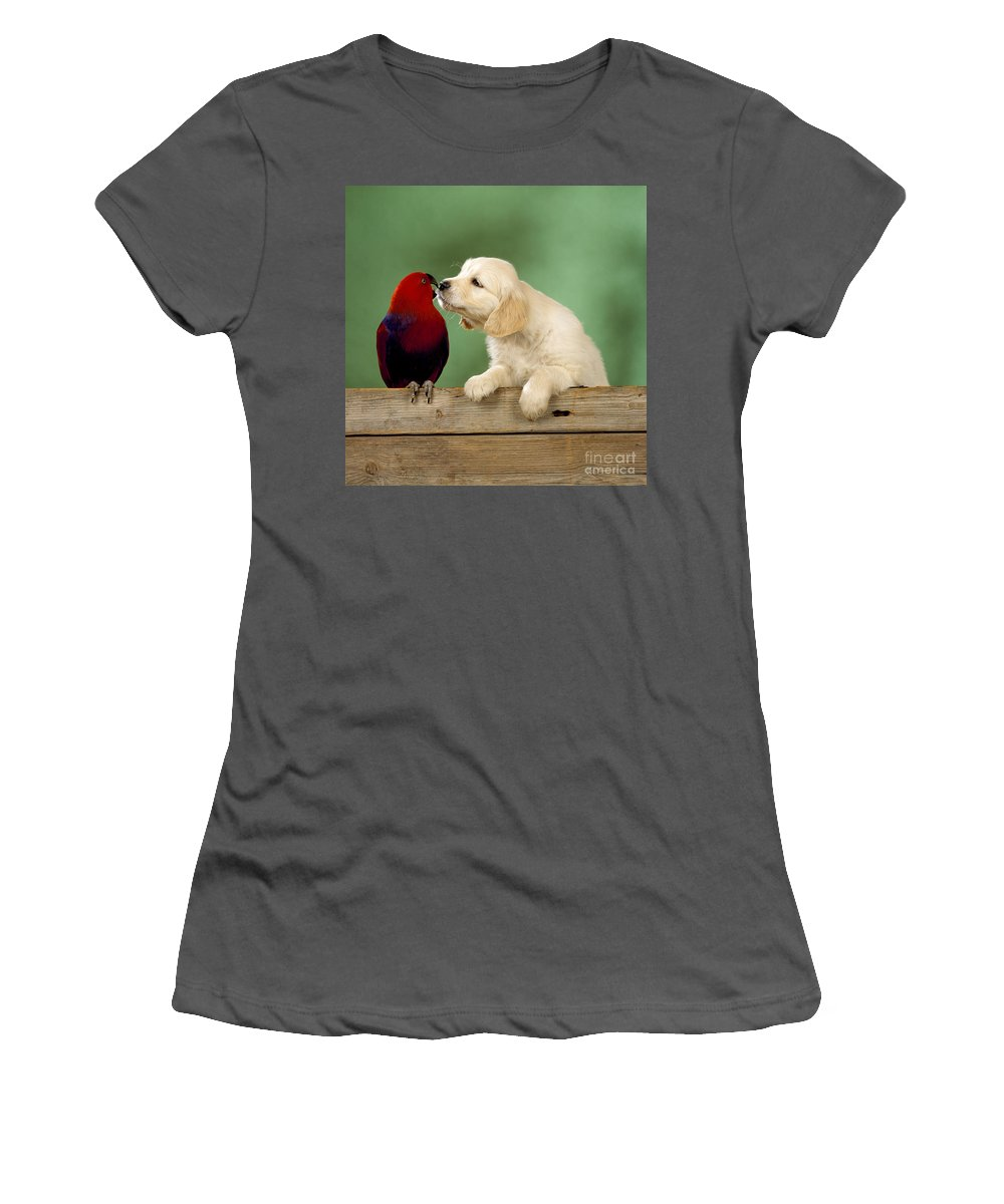 Golden Retriever Women's T-Shirt (Athletic Fit) featuring the photograph Golden Retriever With Grand Eclectus by John Daniels