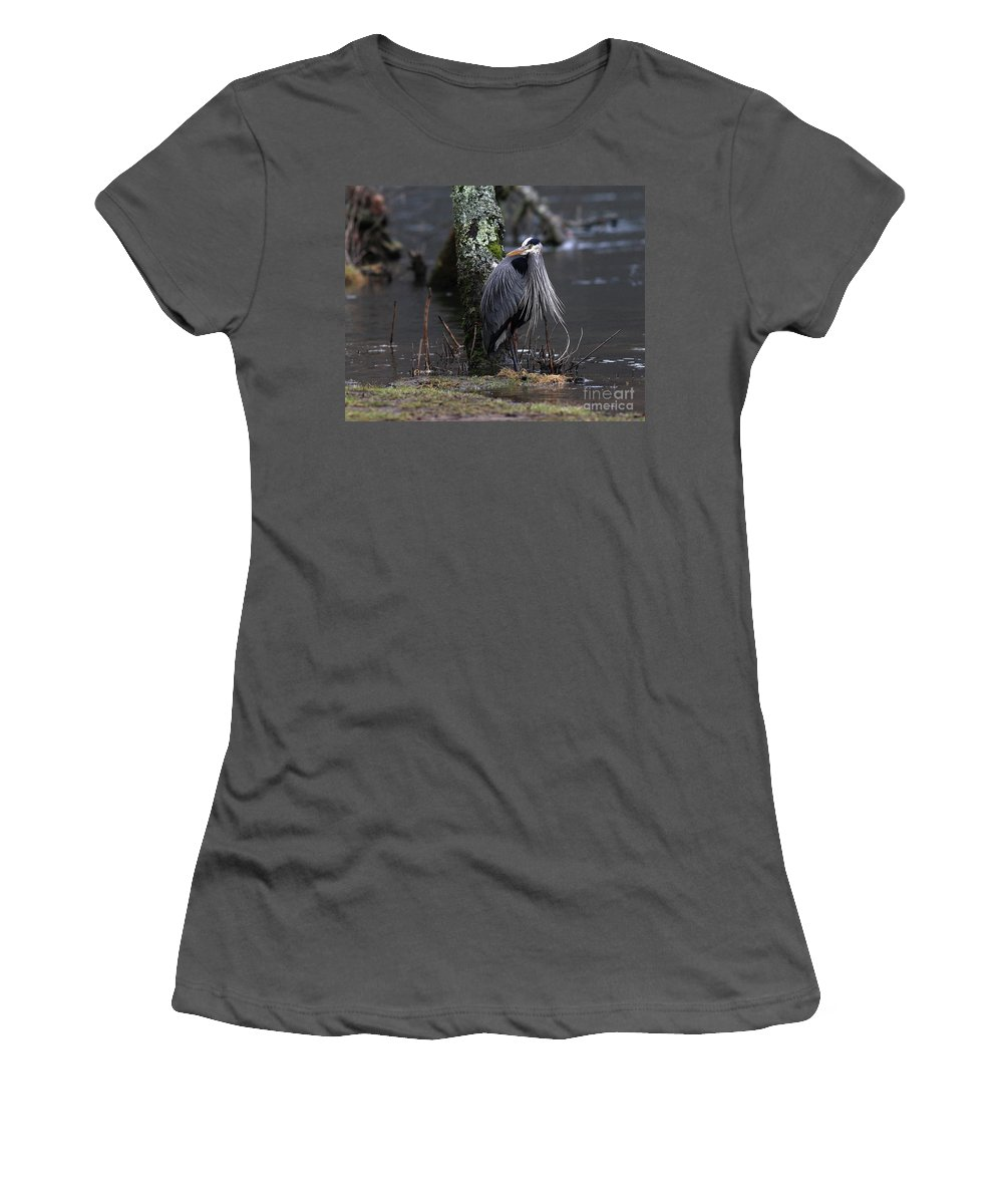 Heron Women's T-Shirt (Athletic Fit) featuring the photograph Great Blue Heron On The Clinch River by Douglas Stucky