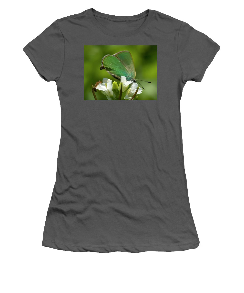 Green Hairstreak Women's T-Shirt (Athletic Fit) featuring the photograph Green Hairstrek by Cliff Norton