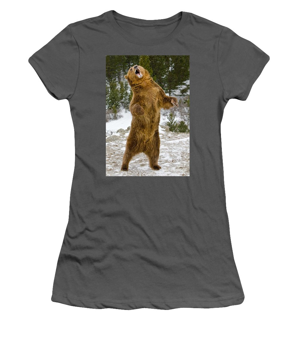 Grizzly Bear Women's T-Shirt (Athletic Fit) featuring the photograph Grizzly Standing by Jerry Fornarotto