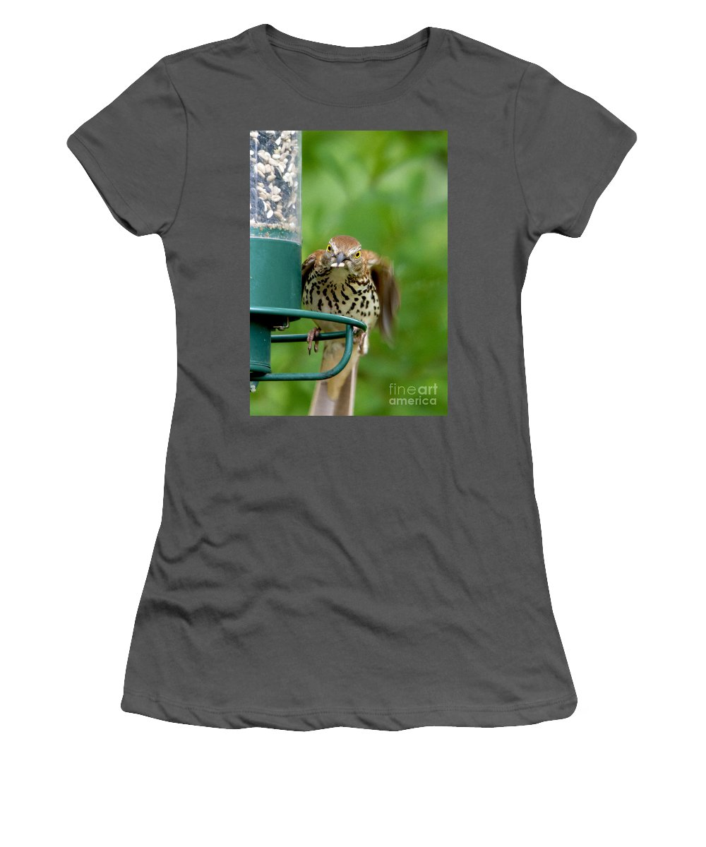Bird Women's T-Shirt (Athletic Fit) featuring the photograph Hey I'm Trying To Eat Here by TJ Baccari