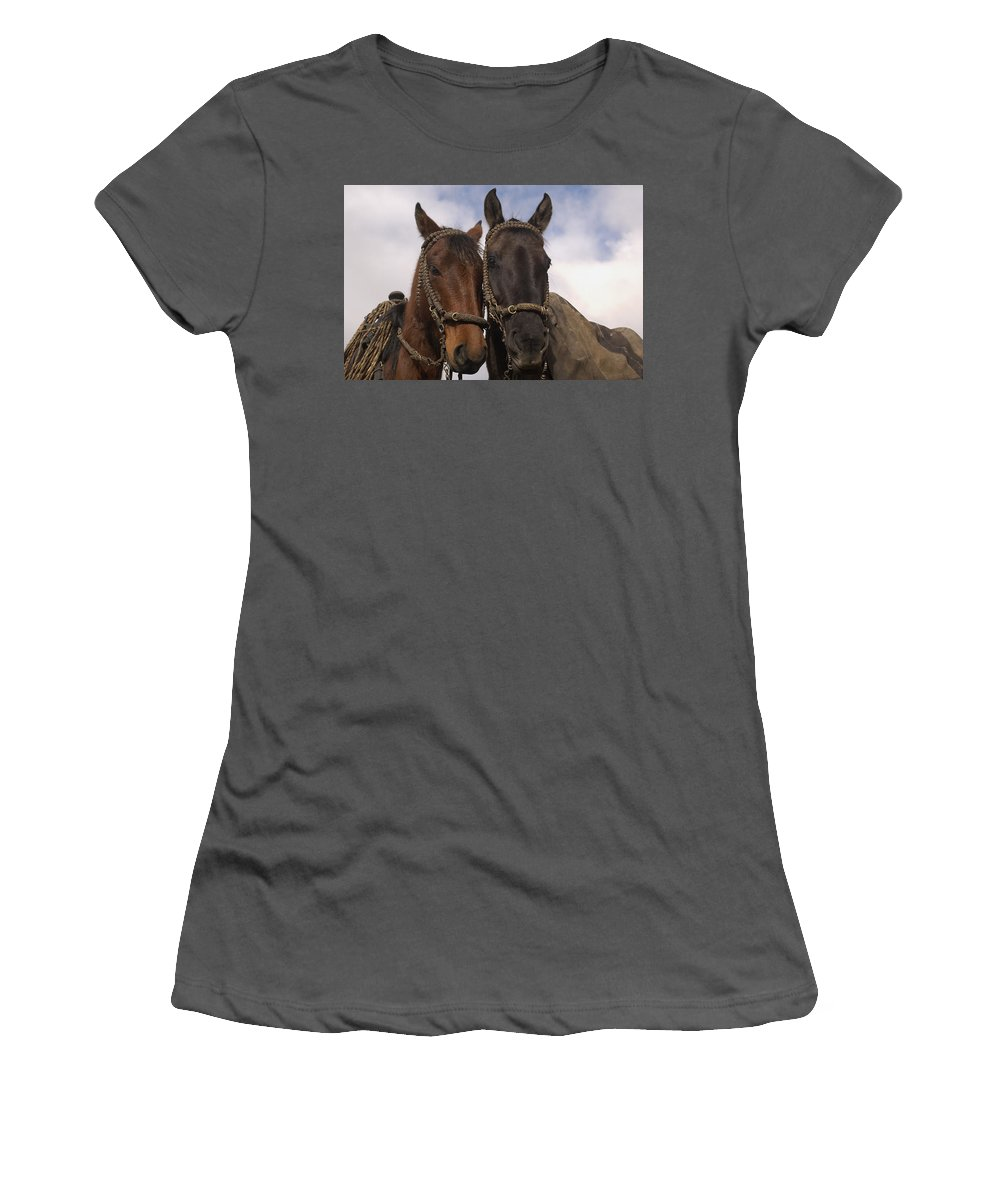 Feb0514 Women's T-Shirt (Athletic Fit) featuring the photograph Horses Belonging To Chagras Ecuador by Pete Oxford