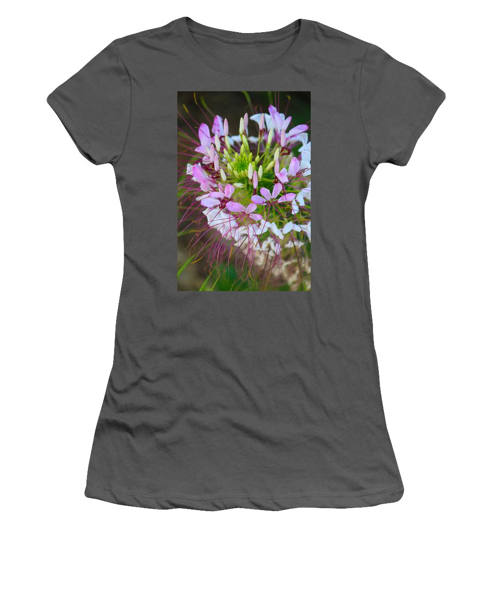 Landscapes Women's T-Shirt (Athletic Fit) featuring the photograph Img V67 by Steve Herndon