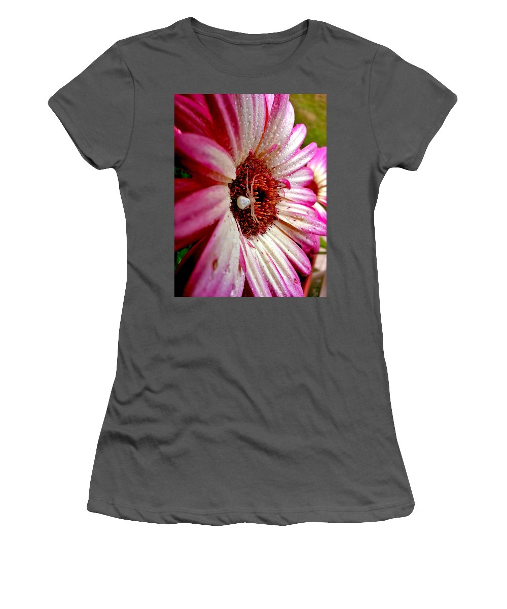 Pink And White Daisies Women's T-Shirt (Athletic Fit) featuring the photograph Itsy Bitsy by Pablo Rosales