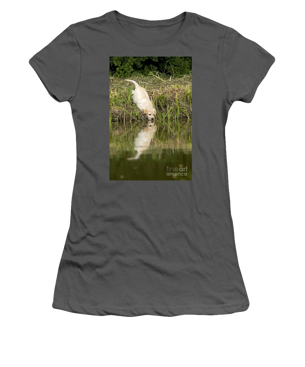 Labrador Retriever Women's T-Shirt (Athletic Fit) featuring the photograph Labrador Puppy Drinking by Jean-Michel Labat