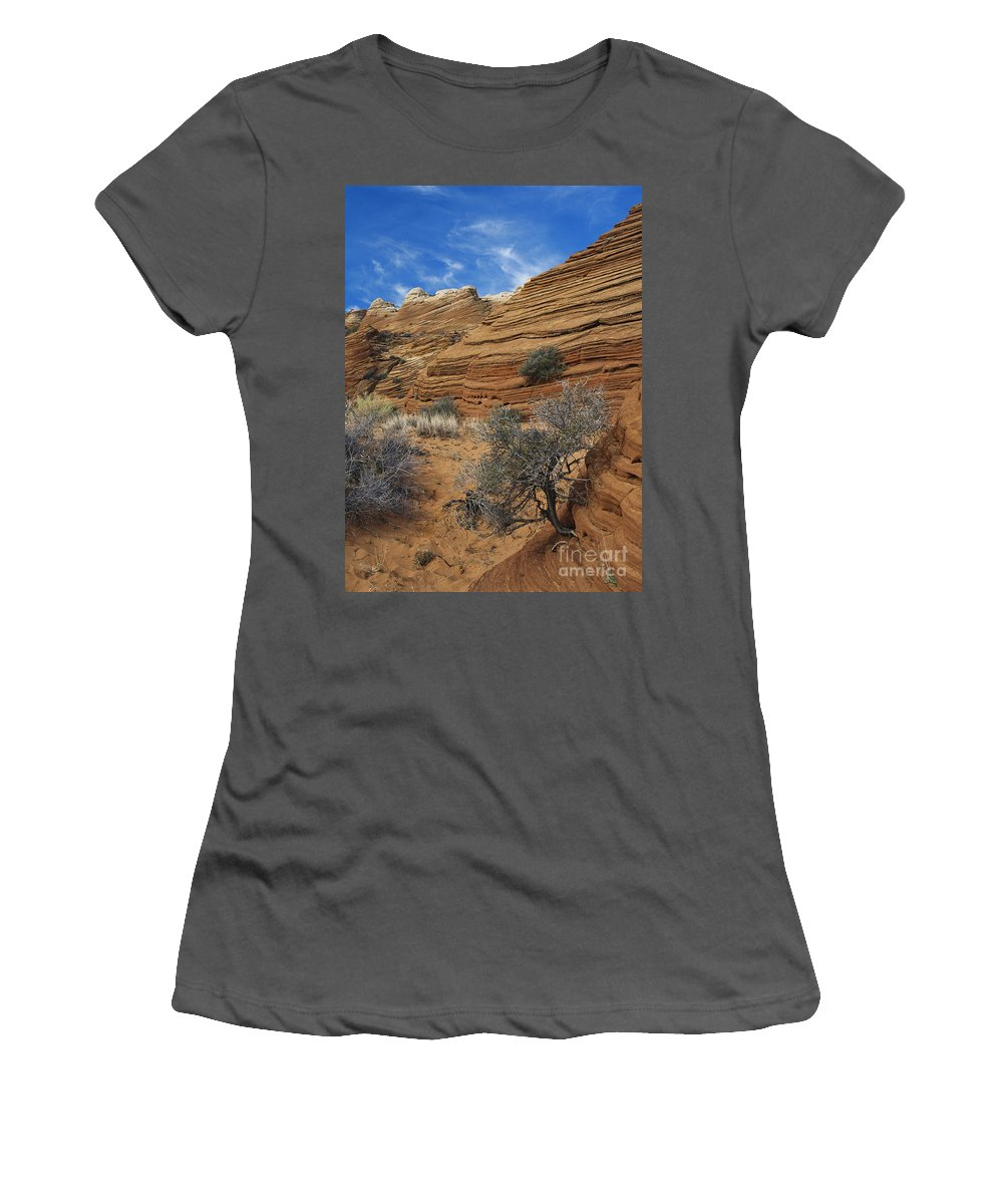 Sandstone Women's T-Shirt (Athletic Fit) featuring the photograph Layered Sandstone by David Davis