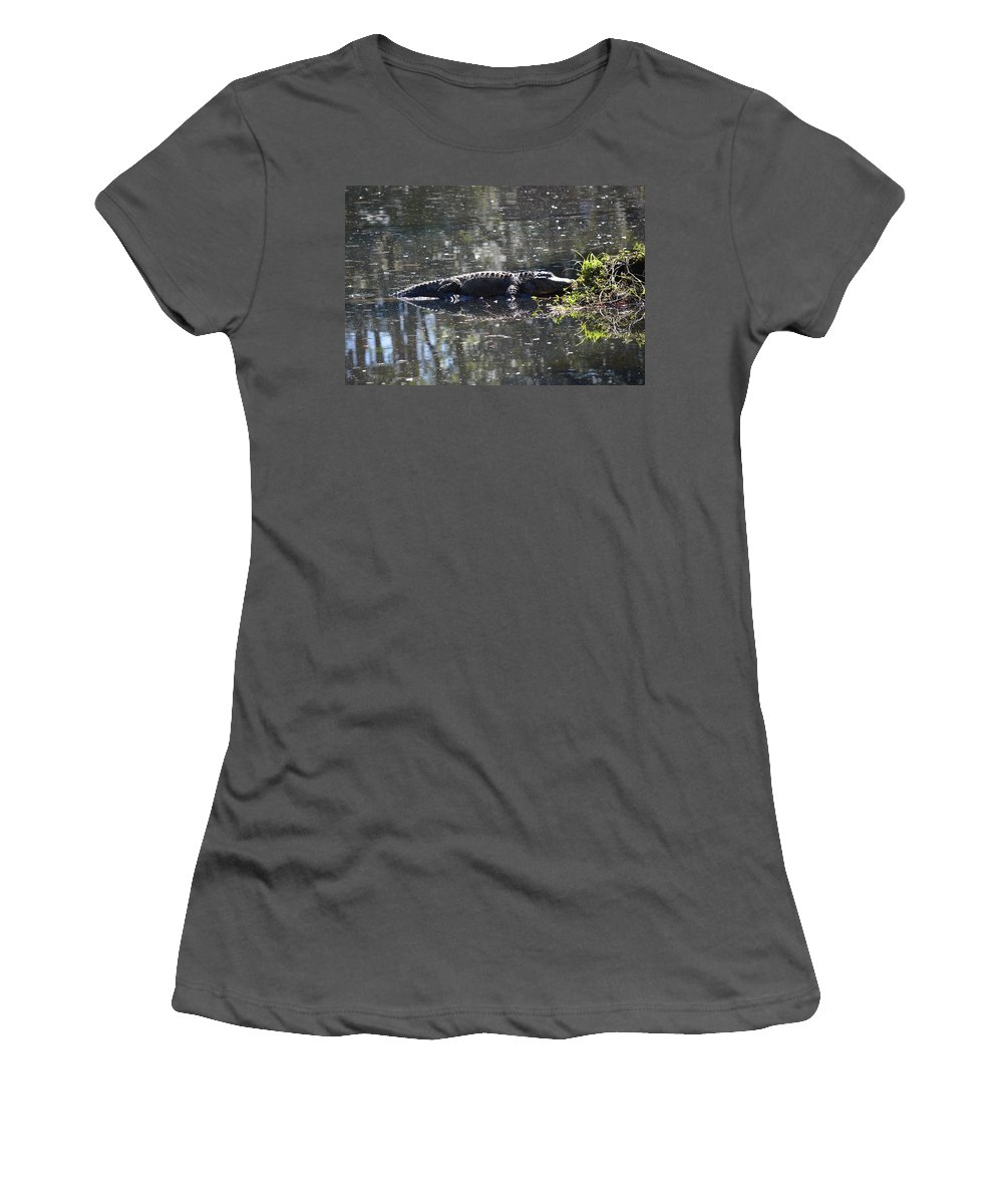 Florida Women's T-Shirt (Athletic Fit) featuring the photograph Lazy Gator by Linda Kerkau