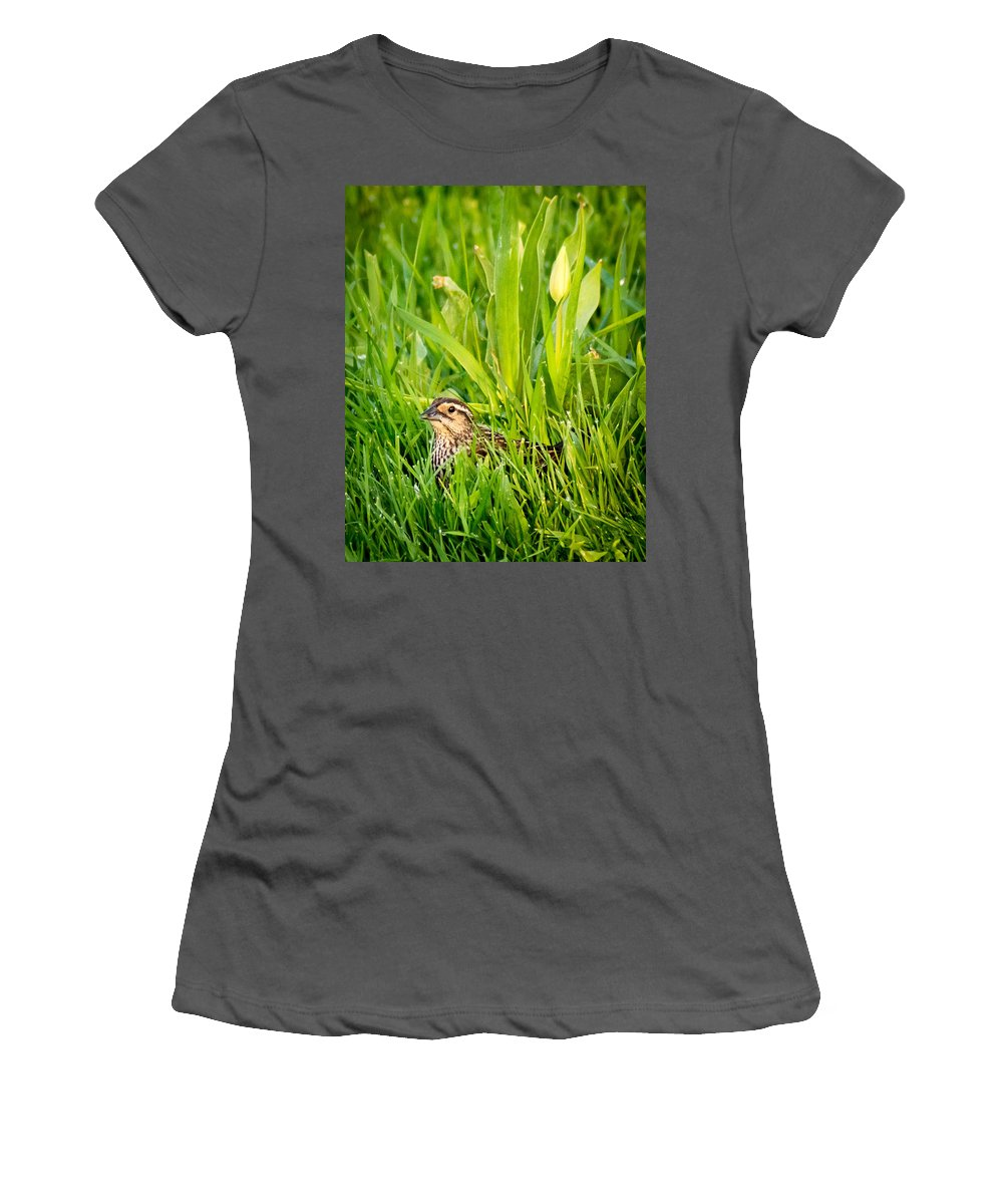 Bird Women's T-Shirt (Athletic Fit) featuring the photograph Low Profile by Bill Pevlor