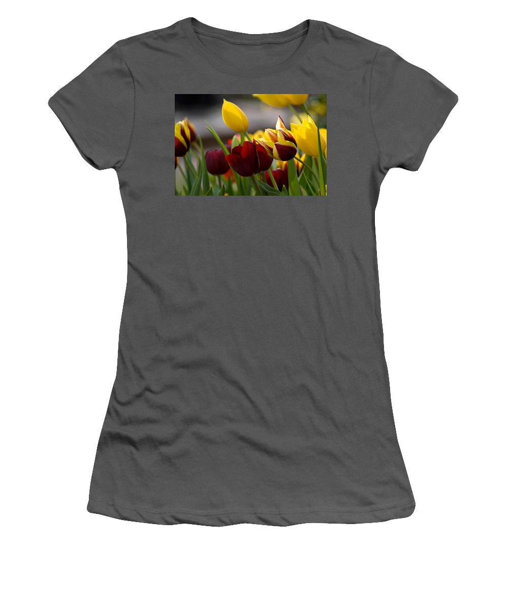 Flower Women's T-Shirt (Athletic Fit) featuring the photograph Maroon And Gold Tulips by Benjamin Reed