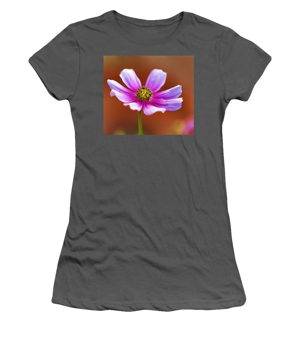 Cosmos Women's T-Shirt (Athletic Fit) featuring the photograph Merry Cosmos Floral by Kathy Clark