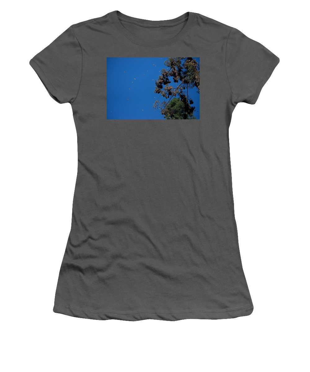 Animals Women's T-Shirt (Athletic Fit) featuring the digital art Monarch Butterflies Flying by Carol Ailles