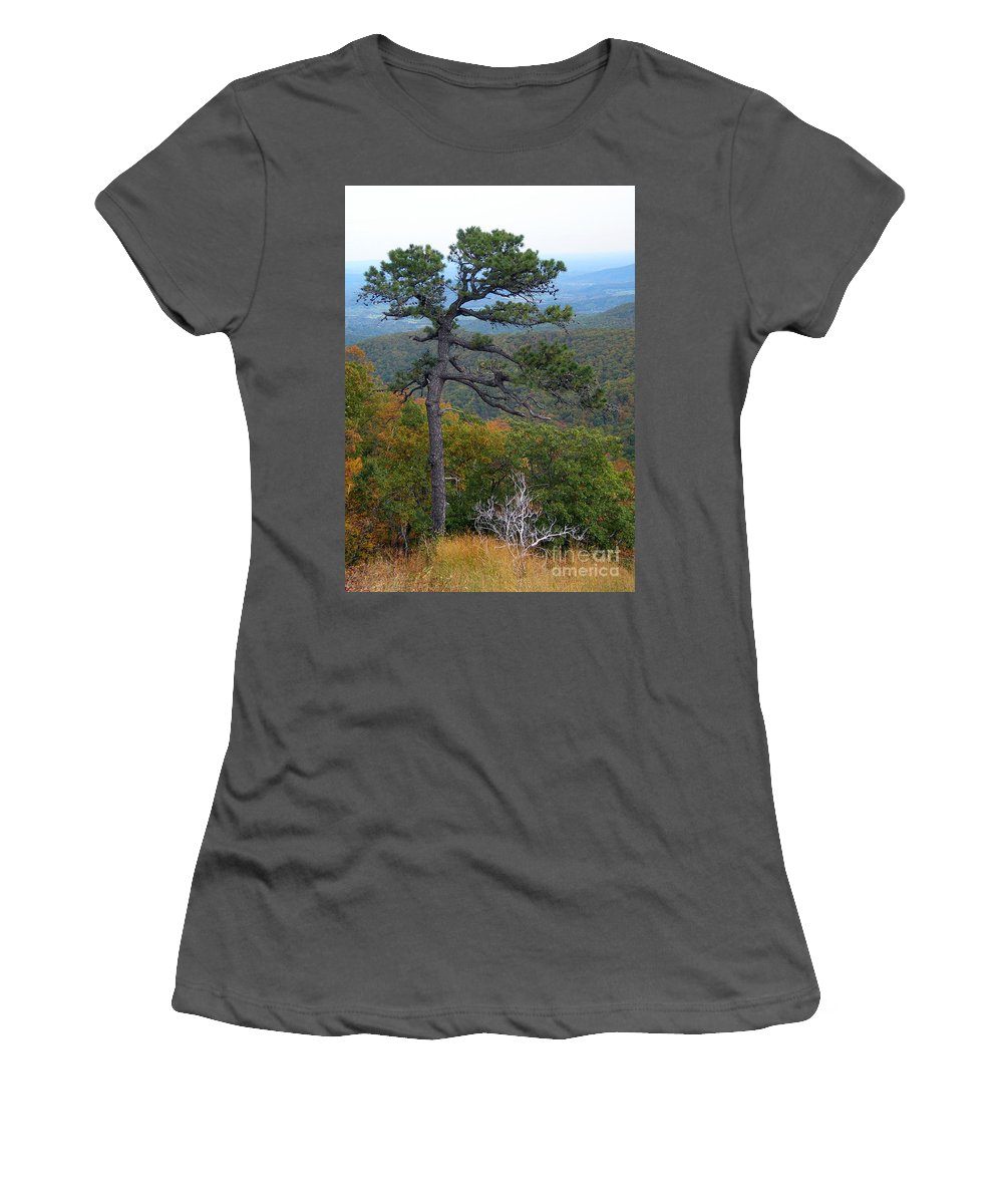 Scenic Tours Women's T-Shirt (Athletic Fit) featuring the photograph Of Time And Tenacity by Skip Willits
