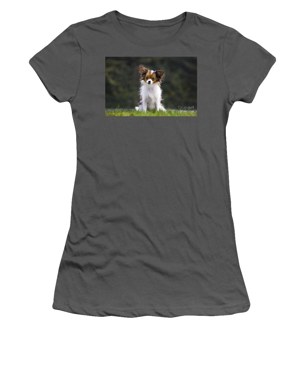 Papillon Women's T-Shirt (Athletic Fit) featuring the photograph Papillon Dog by Johan De Meester