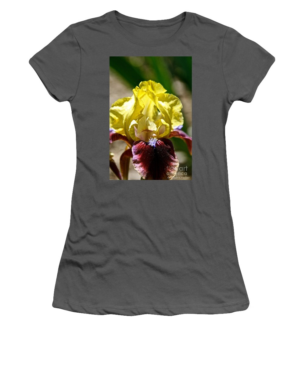 Flower Women's T-Shirt (Athletic Fit) featuring the photograph Petal Up by Susan Herber