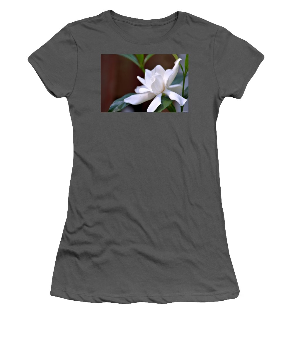 Poetry In White Women's T-Shirt (Athletic Fit) featuring the photograph Poetry In White by Maria Urso
