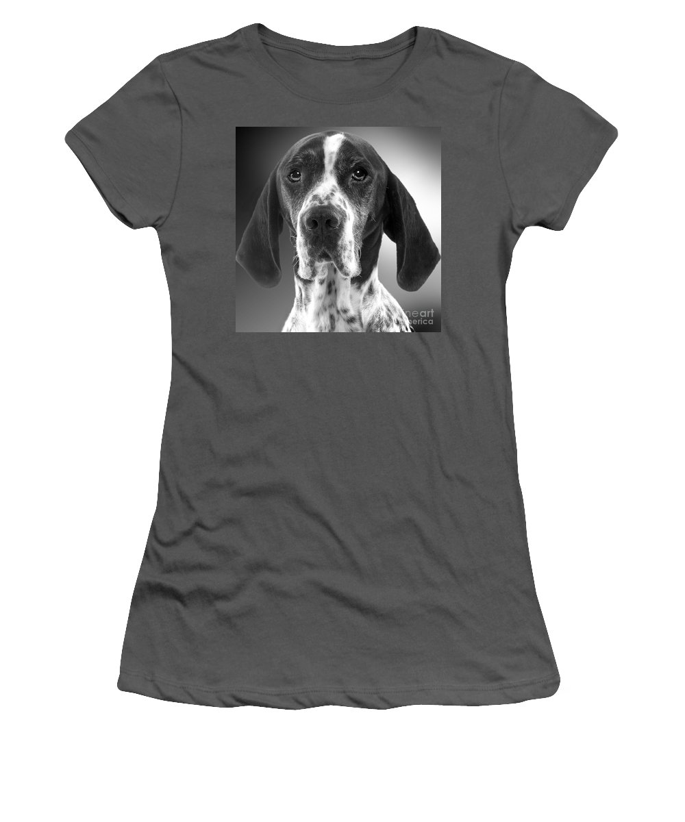 Pointer Women's T-Shirt (Athletic Fit) featuring the photograph Pointer Dog by Jean-Michel Labat
