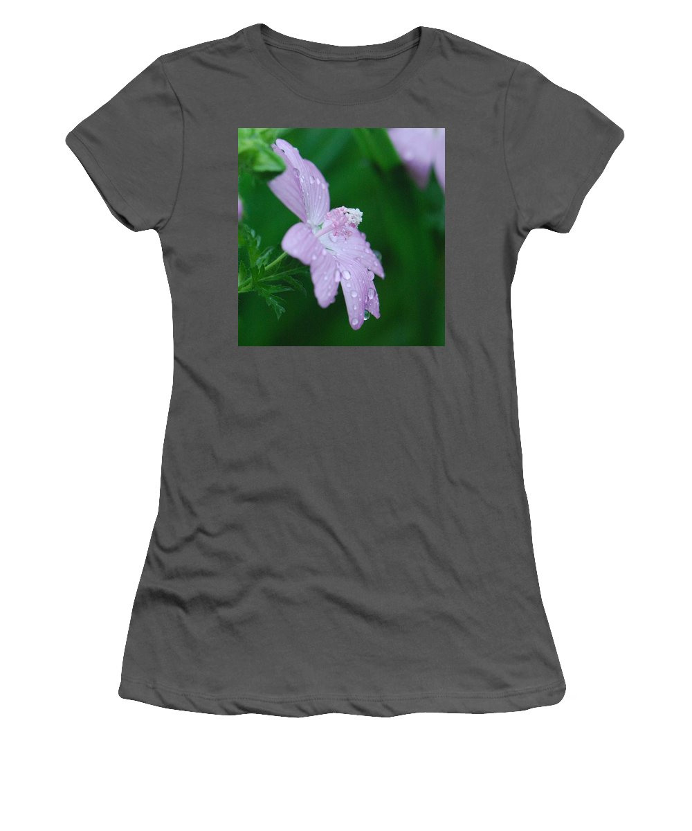 Flower Women's T-Shirt (Athletic Fit) featuring the photograph Rainy Day Mallow by Amy Porter