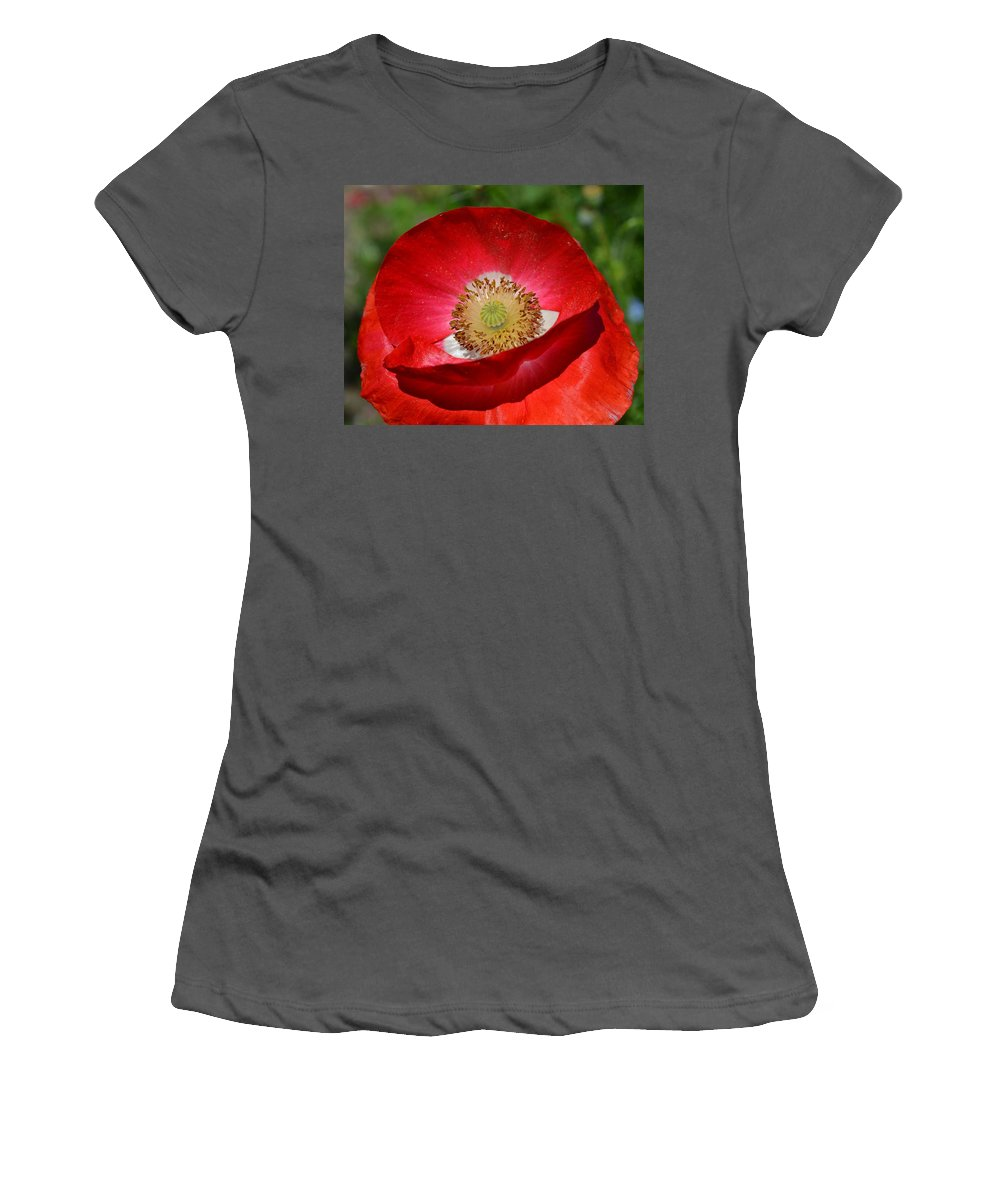 Poppy Women's T-Shirt (Athletic Fit) featuring the photograph Red Poppy 3 by Katy Hawk