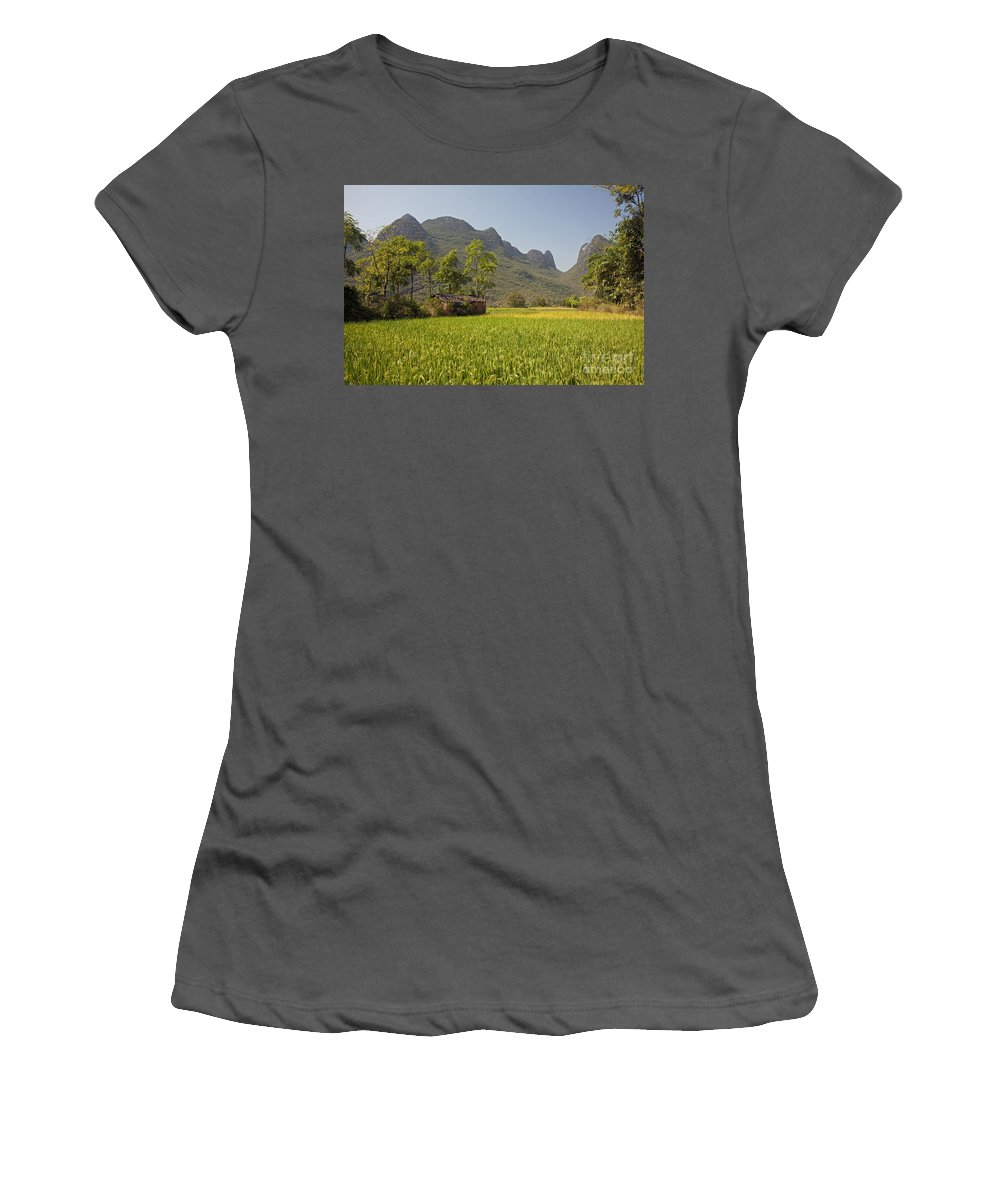 Agriculture Women's T-Shirt (Athletic Fit) featuring the photograph Rice Farm by David Davis