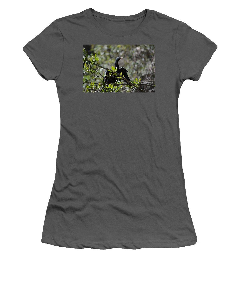 Bird Women's T-Shirt (Athletic Fit) featuring the photograph River Bird by Linda Kerkau