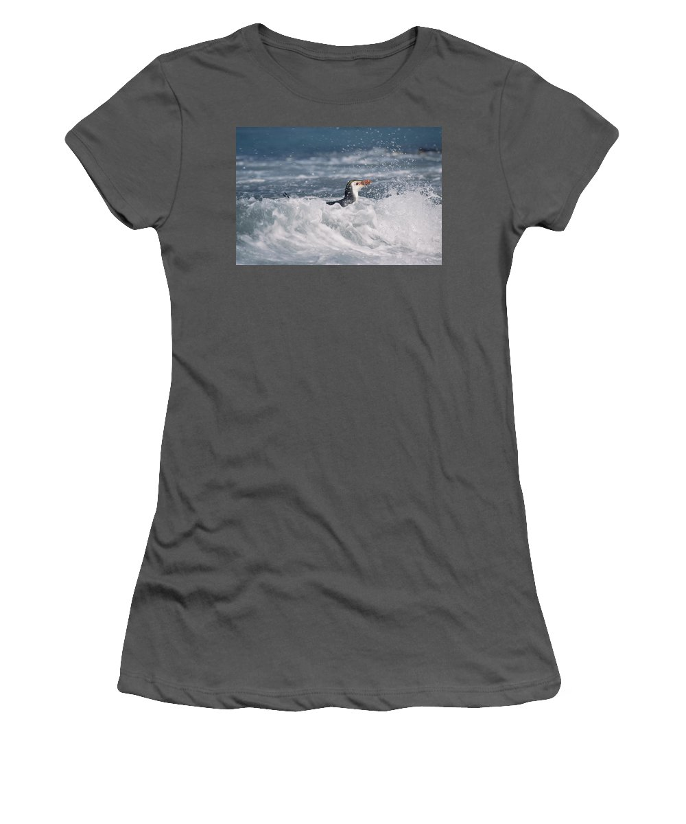 Feb0514 Women's T-Shirt (Athletic Fit) featuring the photograph Royal Penguin Swimming In Surf by Konrad Wothe