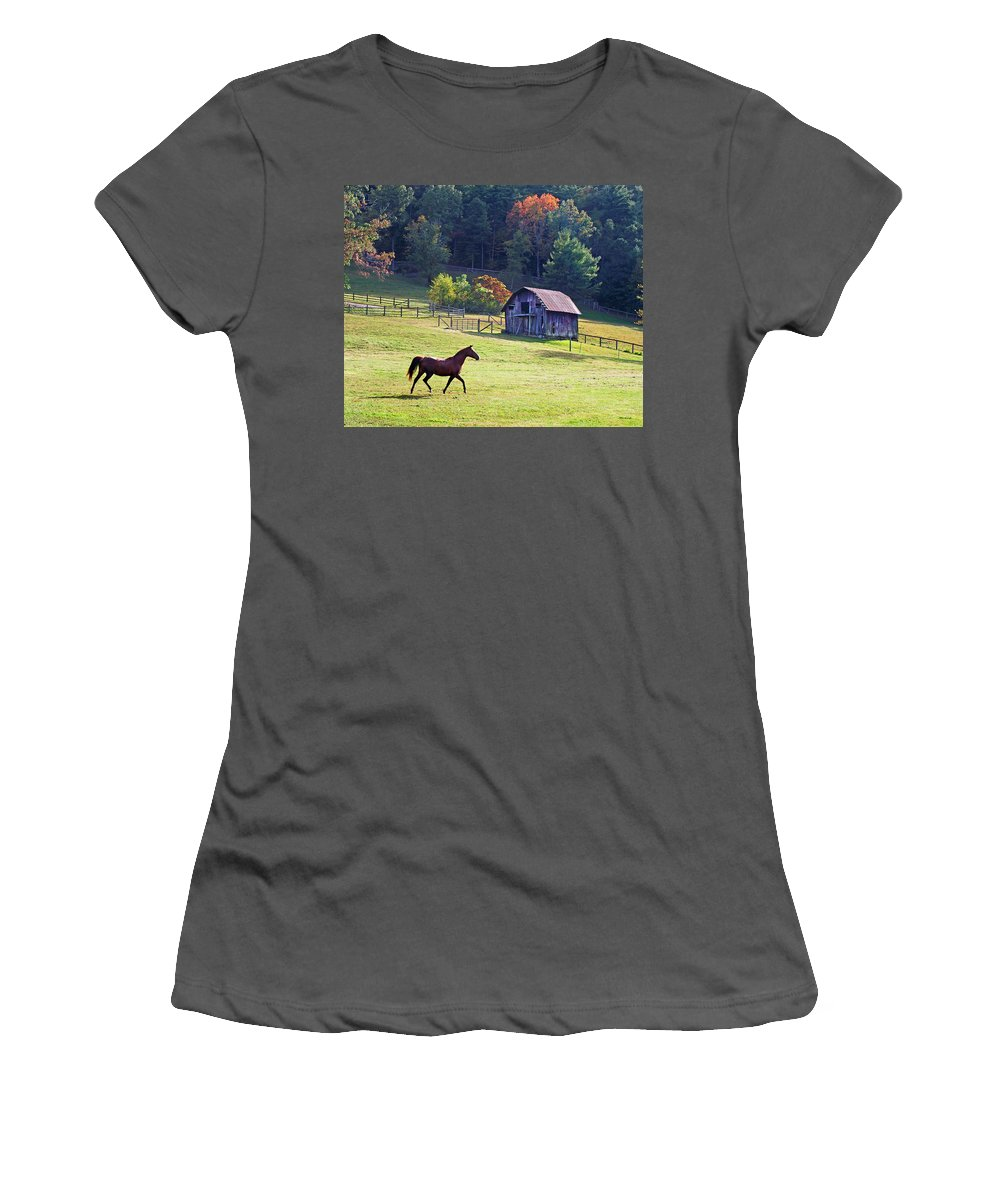 Duane Mccullough Women's T-Shirt (Athletic Fit) featuring the photograph Running Horse And Old Barn by Duane McCullough