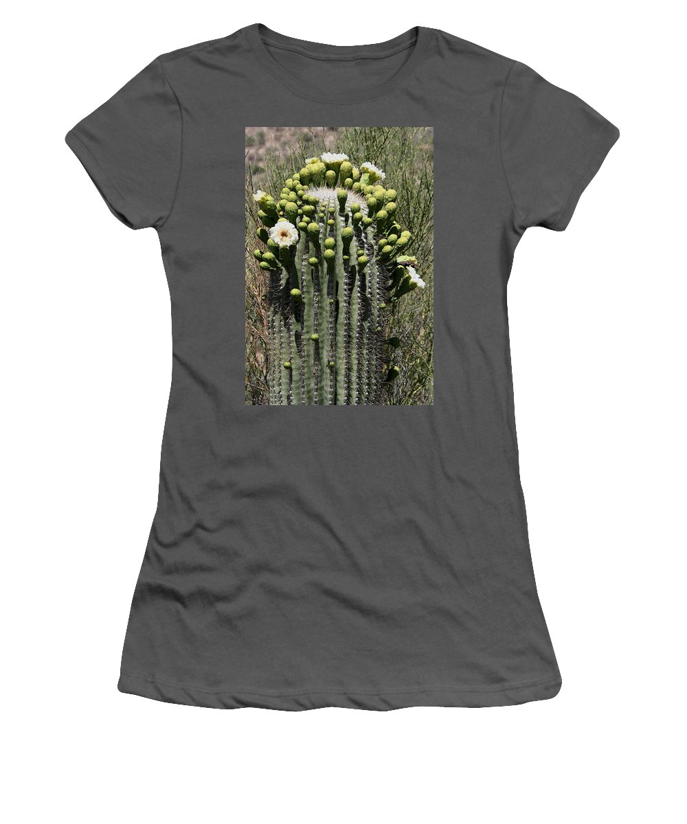 Saguaro Women's T-Shirt (Athletic Fit) featuring the photograph Saguaro In Bloom by Joe Kozlowski