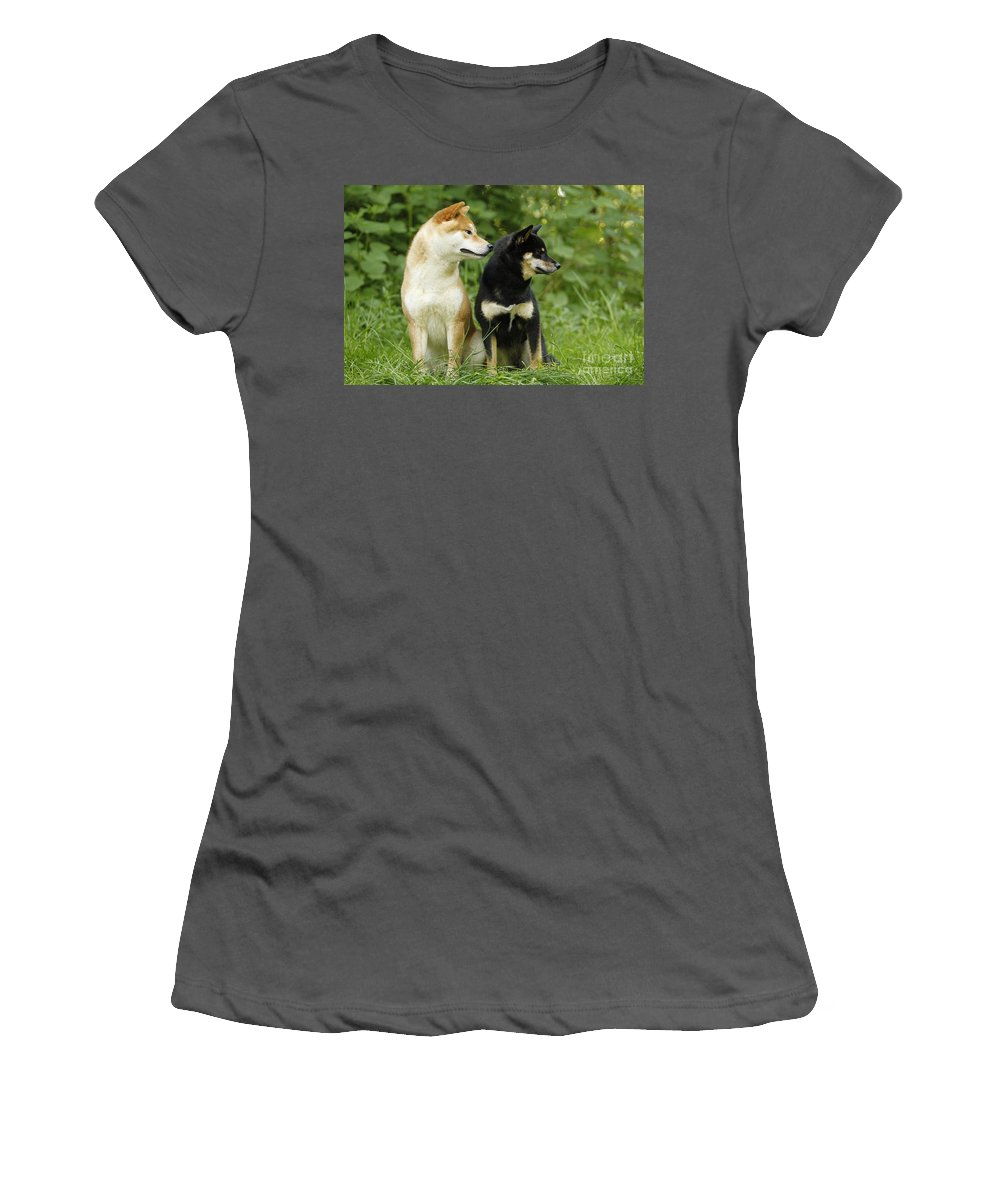Shiba Inu Women's T-Shirt (Athletic Fit) featuring the photograph Shiba Inu Dogs by Jean-Michel Labat