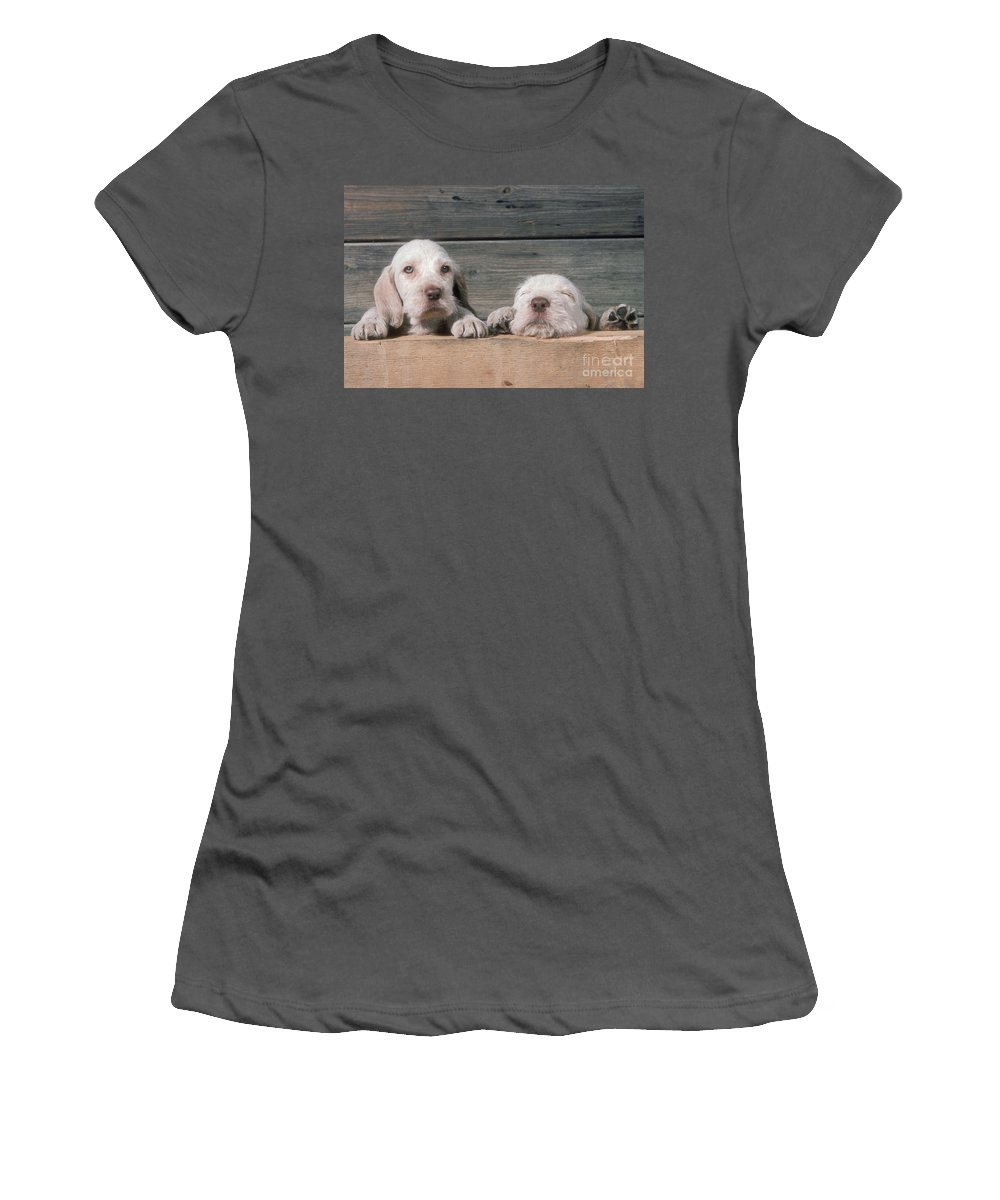 Spinone Women's T-Shirt (Athletic Fit) featuring the photograph Spinone Puppies by John Daniels