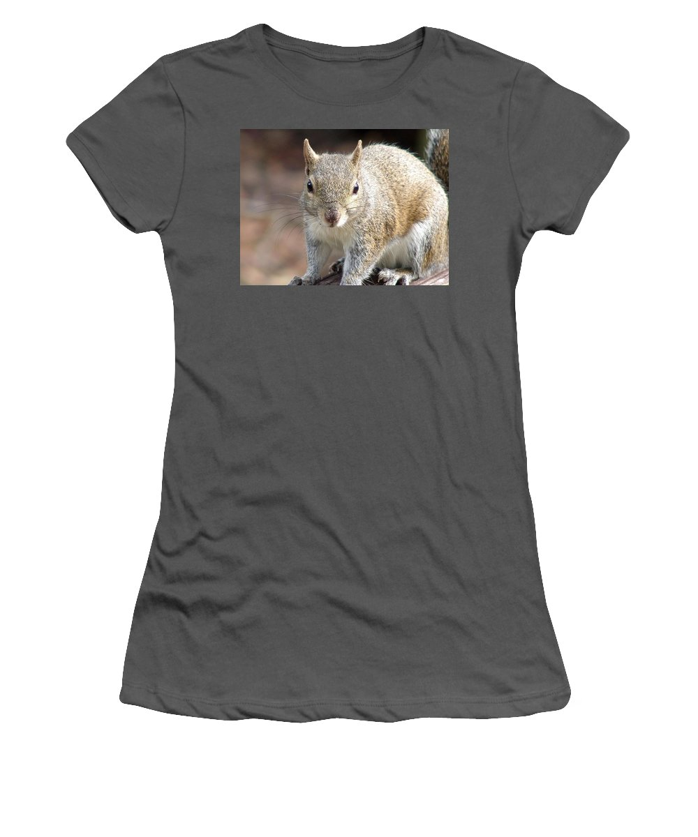 Squirrel Women's T-Shirt (Athletic Fit) featuring the photograph Squirrel Profile by Ian Mcadie