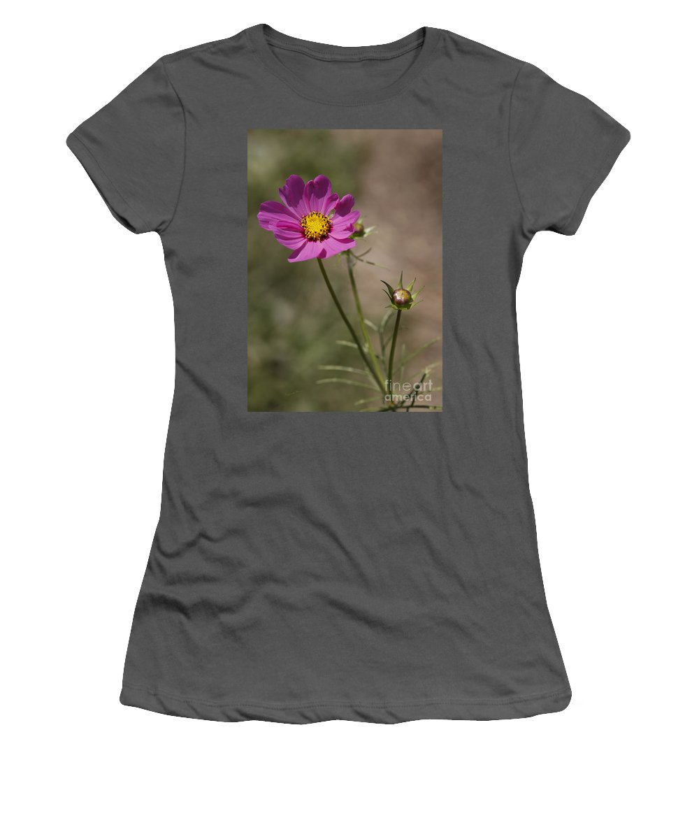 Flower Women's T-Shirt (Athletic Fit) featuring the photograph Summer Cosmos by Deborah Benoit