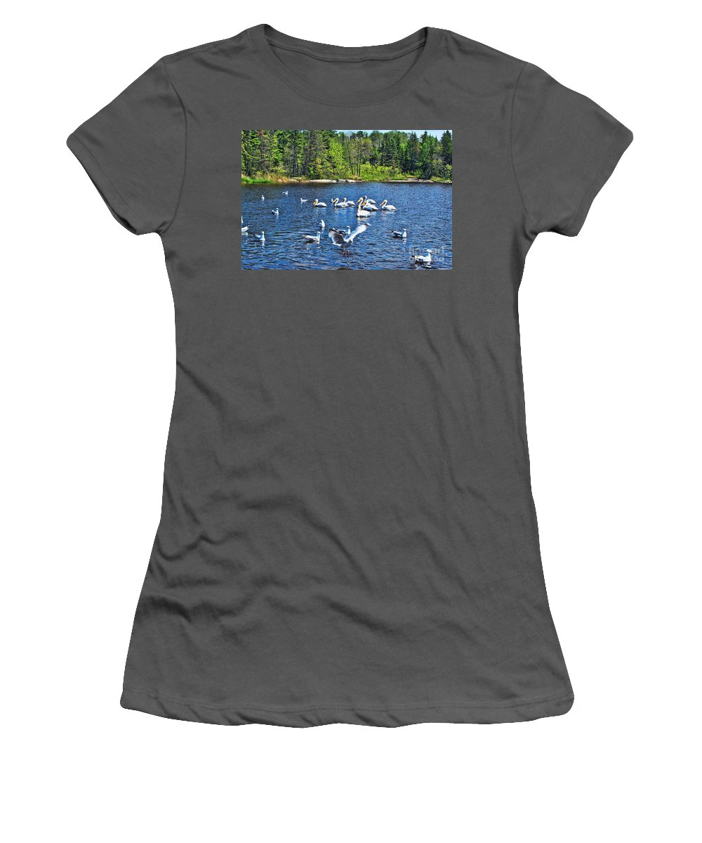 Ontario Women's T-Shirt (Athletic Fit) featuring the photograph Taking Flight In Ontario by Tommy Anderson