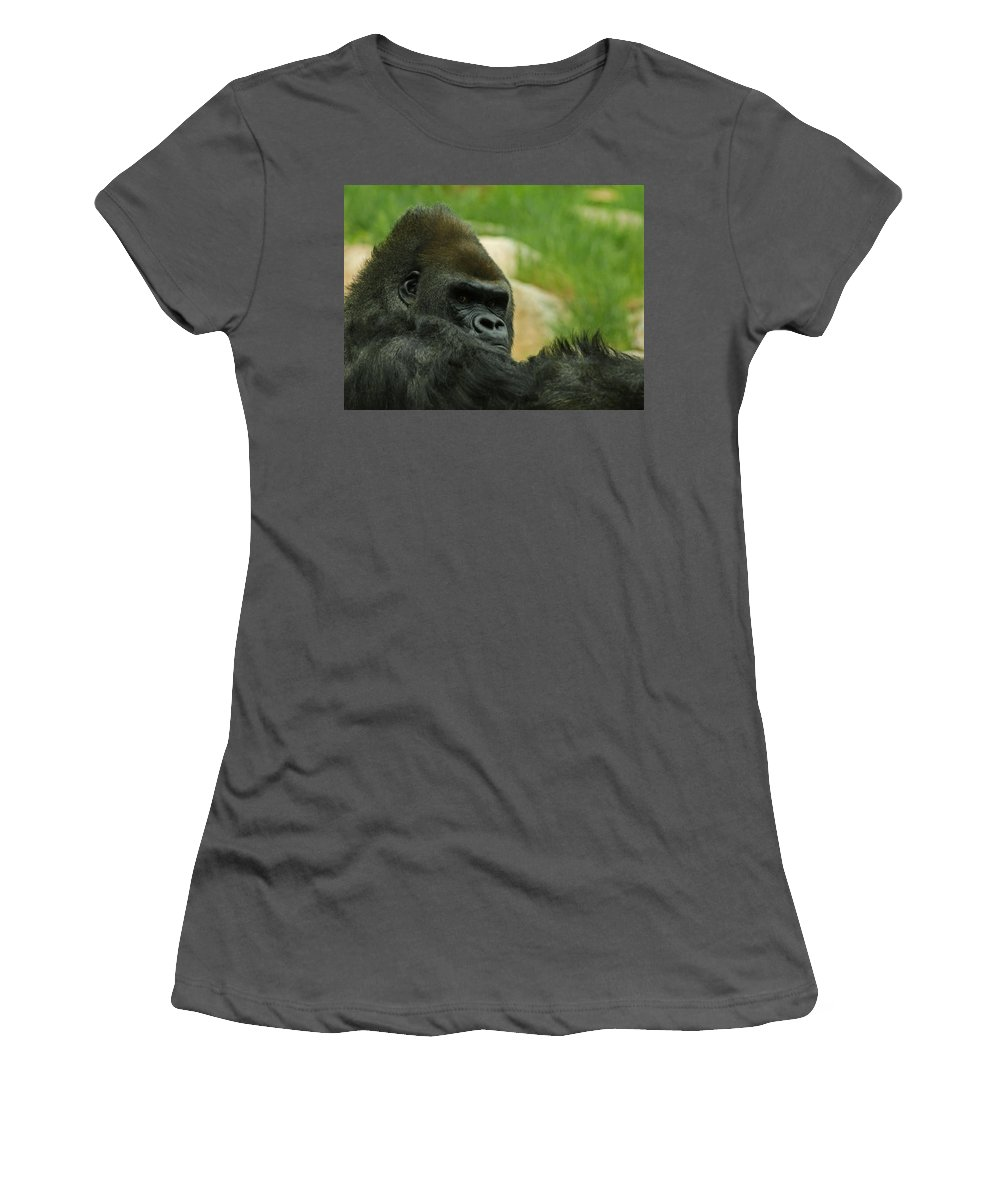 Animals Women's T-Shirt (Athletic Fit) featuring the digital art The Gorilla 2 by Ernie Echols