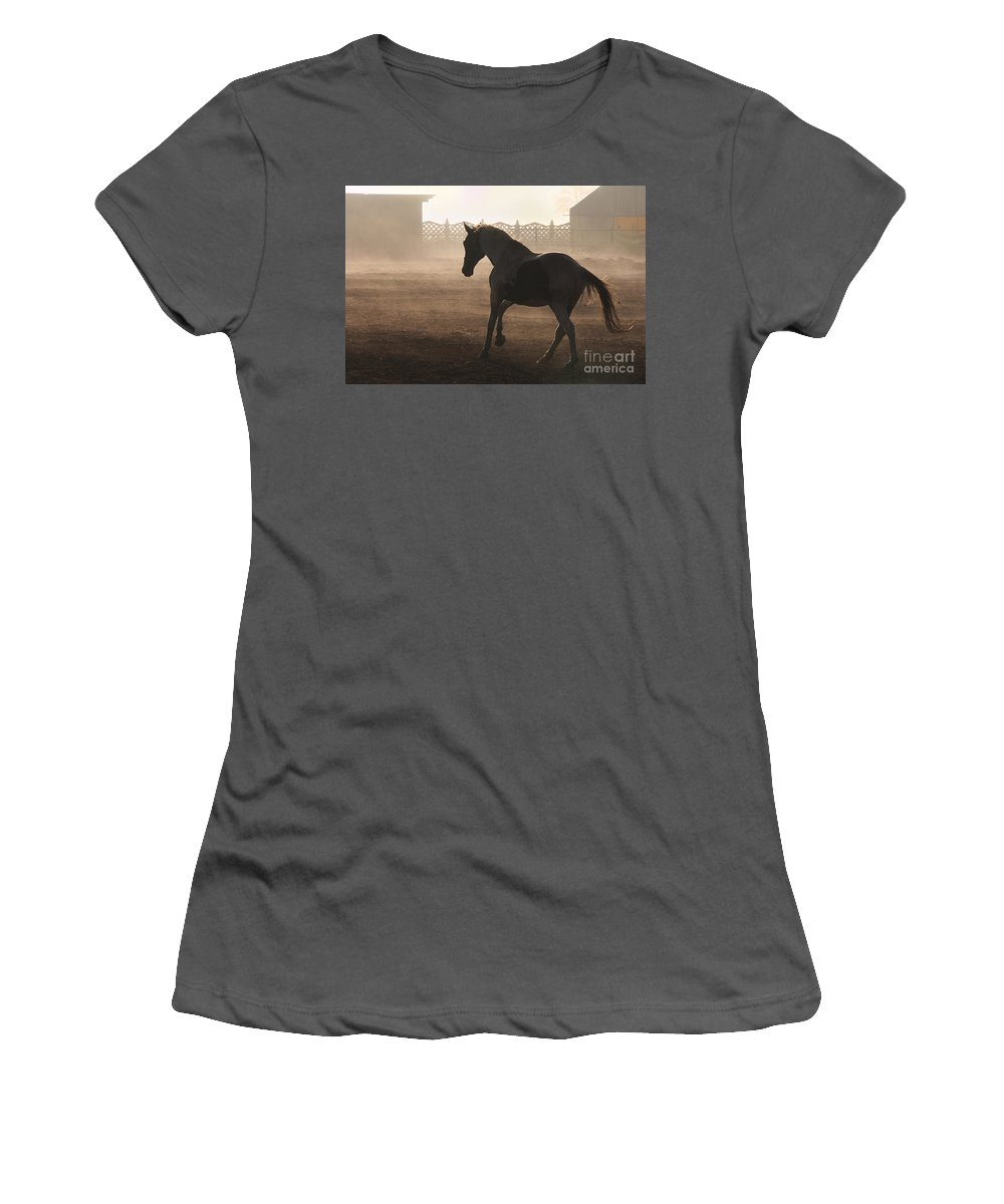 Horse Women's T-Shirt (Athletic Fit) featuring the photograph The Morning Light by Angel Tarantella