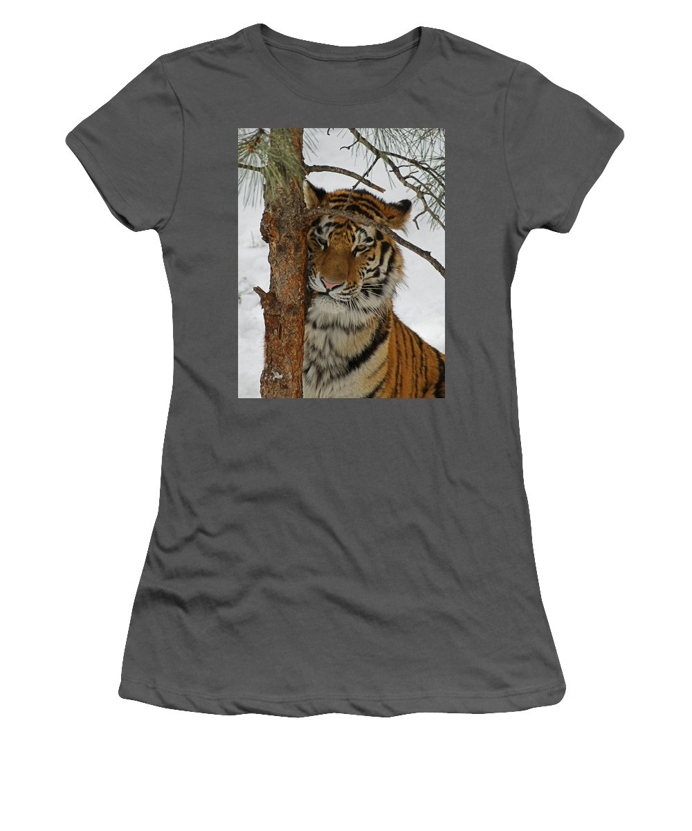 Tiger Women's T-Shirt (Athletic Fit) featuring the photograph Tiger 2 by Ernie Echols