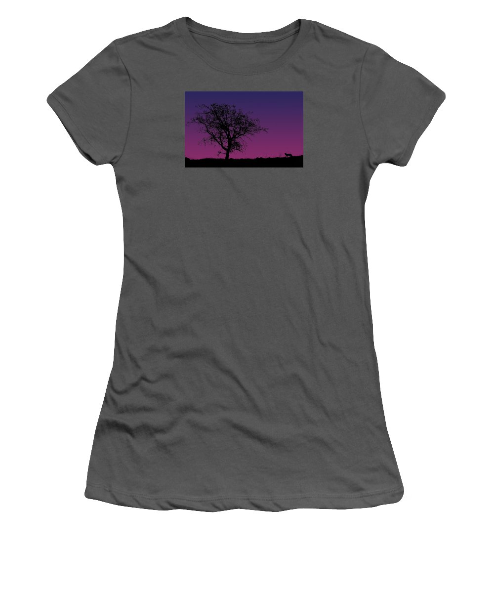 Tree Women's T-Shirt (Athletic Fit) featuring the photograph Tree And Coyote by Robert Woodward