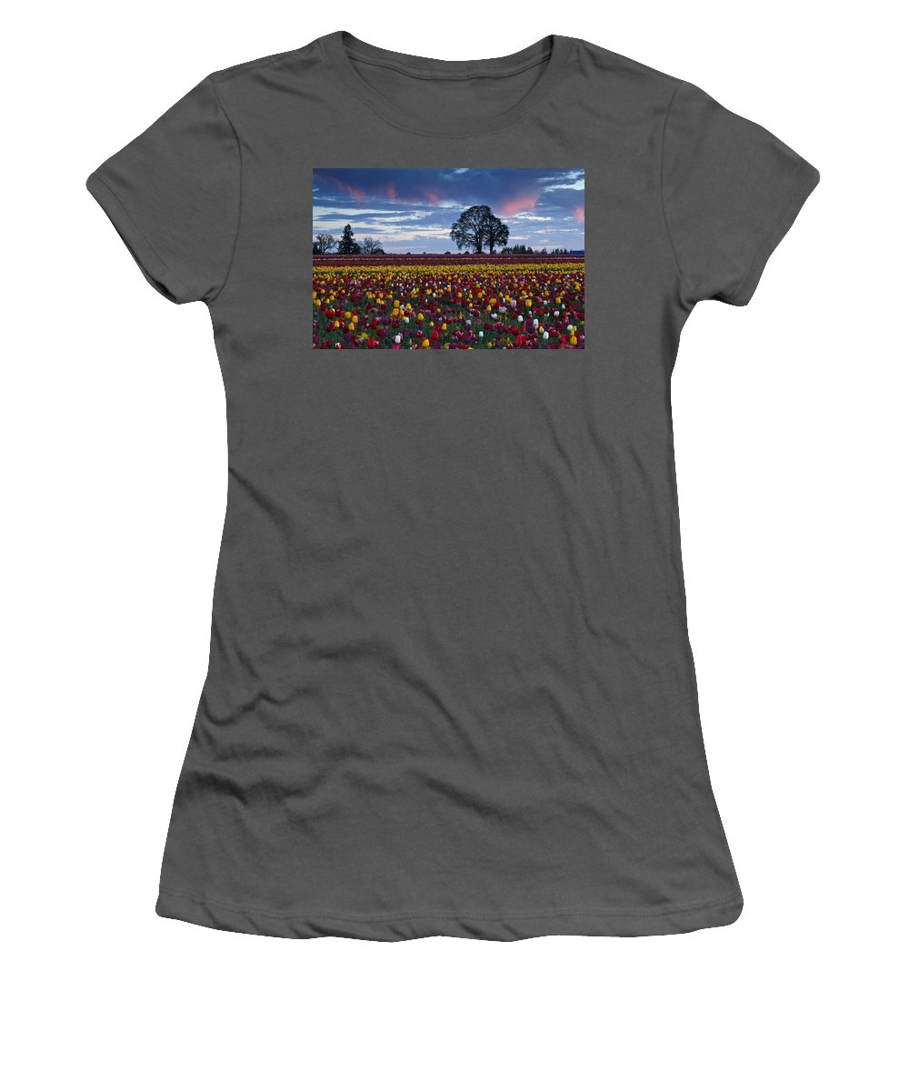 Tulip Field's Last Colors Women's T-Shirt (Athletic Fit) featuring the photograph Tulip Field's Last Colors by Wes and Dotty Weber