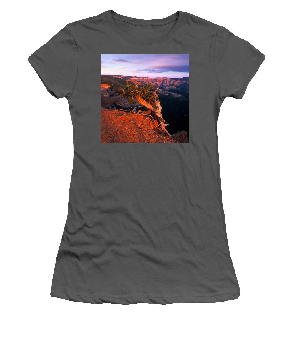 Twisted Forest Women's T-Shirt (Athletic Fit) featuring the photograph Twisted Forest by Leland D Howard