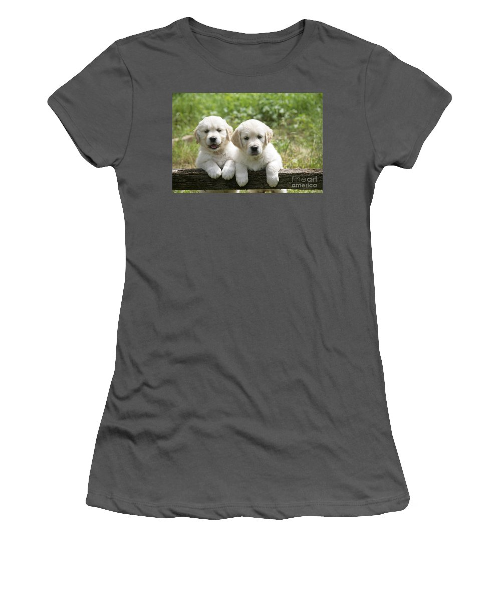 Two Women's T-Shirt (Athletic Fit) featuring the photograph Two Golden Retriever Puppies by John Daniels