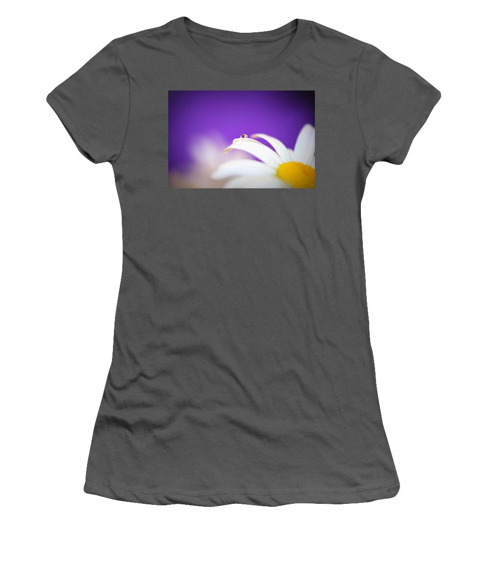 Daisy Women's T-Shirt (Athletic Fit) featuring the photograph Violet Daisy Dreams by Lisa Knechtel