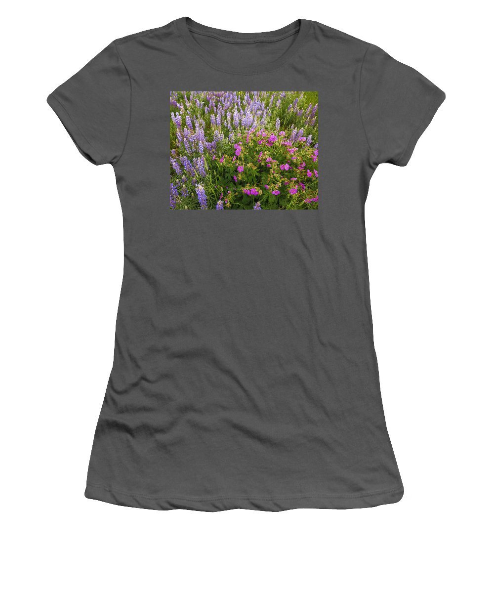 Lupine Women's T-Shirt (Athletic Fit) featuring the photograph Wild Flowers Display by Vishwanath Bhat