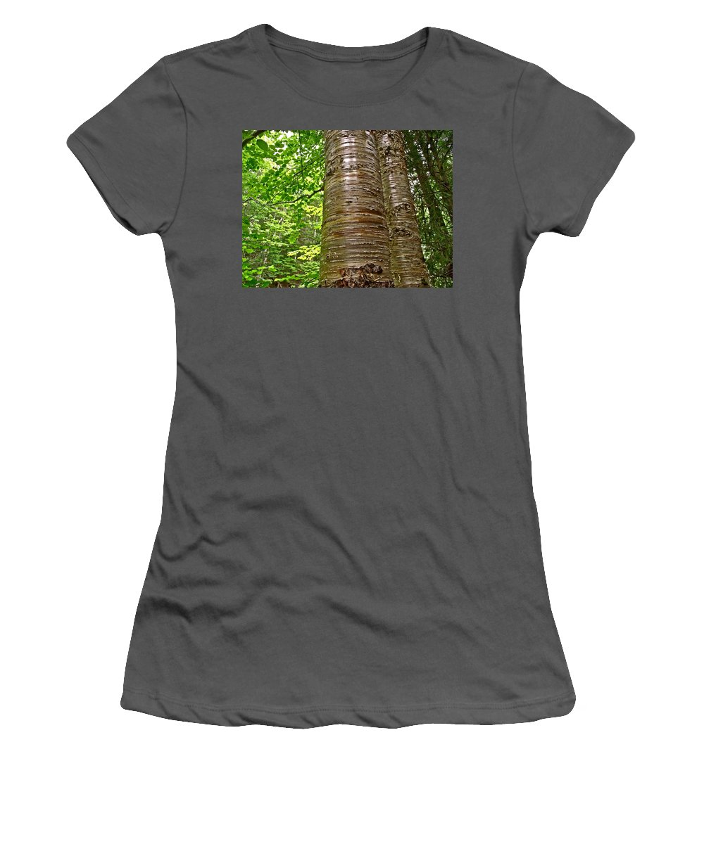 Yellow Birch Near La Chute In Forillon Np Women's T-Shirt (Athletic Fit) featuring the photograph Yellow Birch Near La Chute In Forillon Np-qc by Ruth Hager