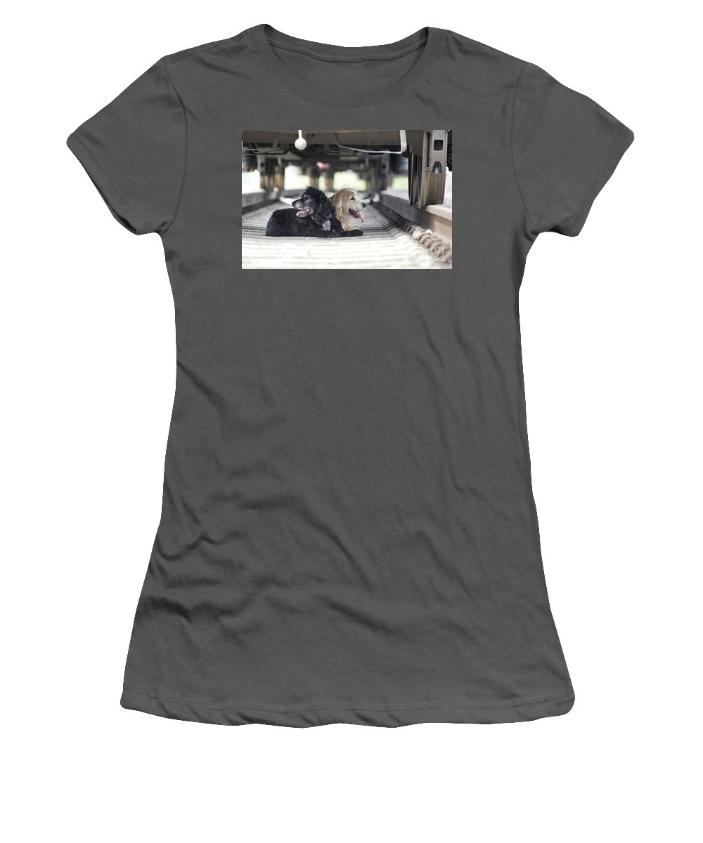 Dog Women's T-Shirt (Athletic Fit) featuring the photograph Dogs Lying Under A Train Wagon by Mats Silvan