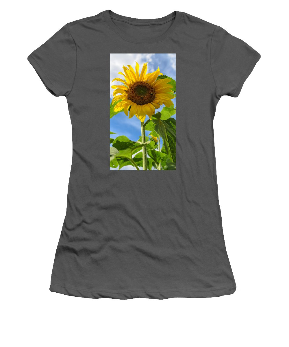 Orange Women's T-Shirt (Athletic Fit) featuring the photograph Sunflower by Michael Goyberg